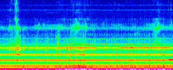 Spektrogramm (nachts im Haus)
